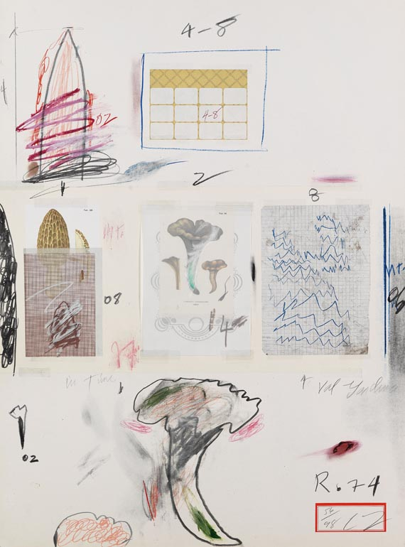 Cy Twombly - Natural History Part I, Mushrooms