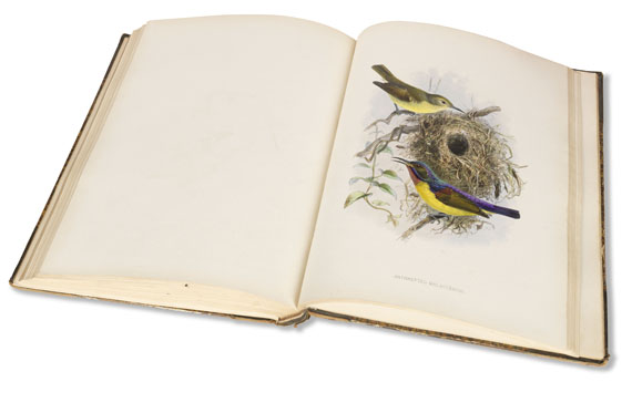 George Ernest Shelley - A monograph of the Nectariniidae, or sun birds -